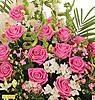 Нажмите на изображение для увеличения Название: розы.jpg Просмотров: 676 Размер:100.5 Кб ID:6131